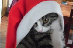 Frohe Weihnachten (Denise Keil)